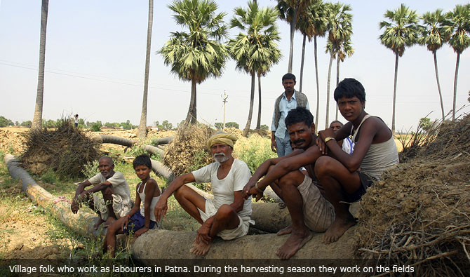 Village folk who work as labourers in Patna. During the harvesting season they work on the fields