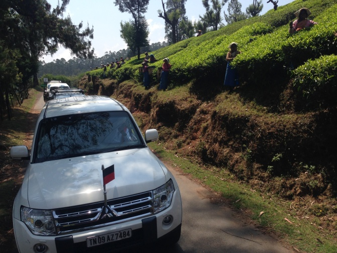 A Raja, the DMK nominee from the Nilgiris constituency, goes campaigning past a tea garden in Ooty.