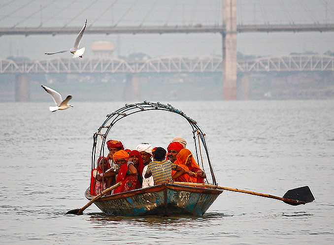 Siberian migratory birds give the devotees company