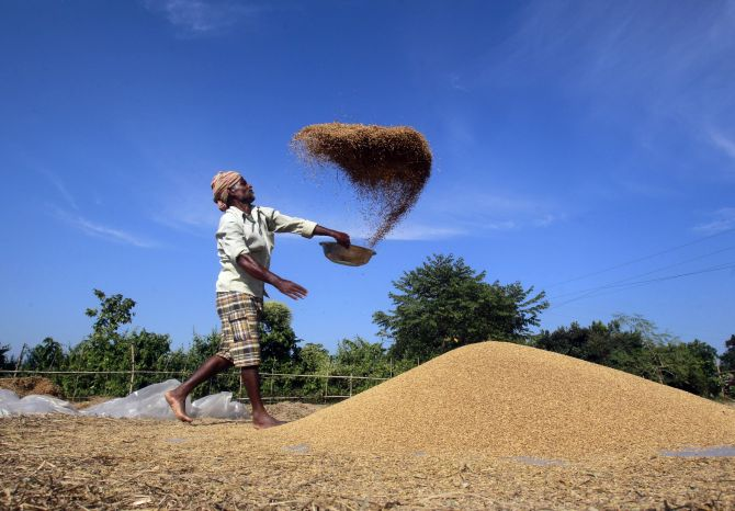 Agriculture credit has been increased to the tune of 700 per cent under the UPA government, the report states.