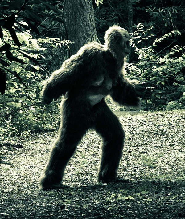 MYTH BUSTED: Yeti and Big Foot exist?