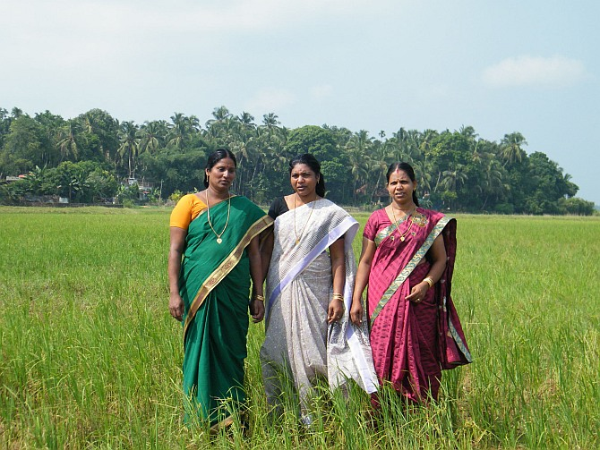 Bindu and her friends cleared their debts off with their first harvest.