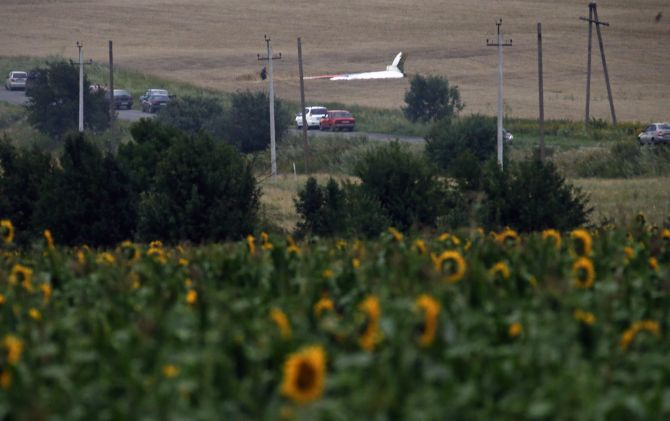The wreckage of a Malaysia Airlines Boeing 777 plane (back) is seen, with sunflowers in the foreground, near the settlement of Grabovo in the Donetsk region.