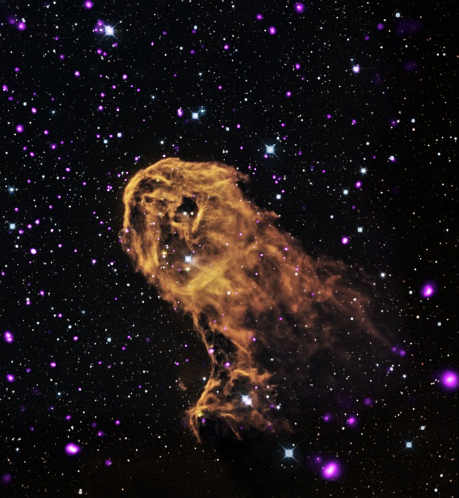 When radiation and winds from massive young stars impact clouds of cool gas, they can trigger new generations of stars to form. This is what may be happening in this object known as the Elephant Trunk Nebula (or its official name of IC 1396A). X-rays from Chandra (purple) have been combined with optical (red, green, and blue) and infrared (orange and cyan) to give a more complete picture of this source