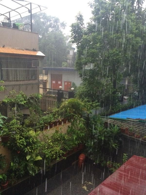 It's pouring good news in Mumbai