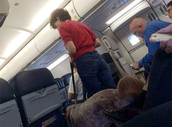 US plane makes emergency landing after dog poops