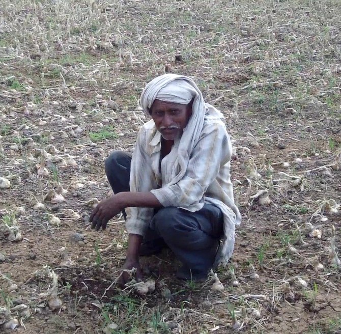 A farmer shows his destroyed crops in Beed, Maharashtra