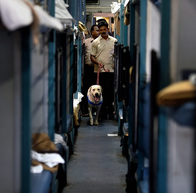 A member of the bomb squad with a sniffer dog examines the train coach after the blasts.