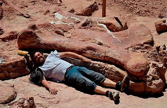 One of the paleontologists lies next to the fossil