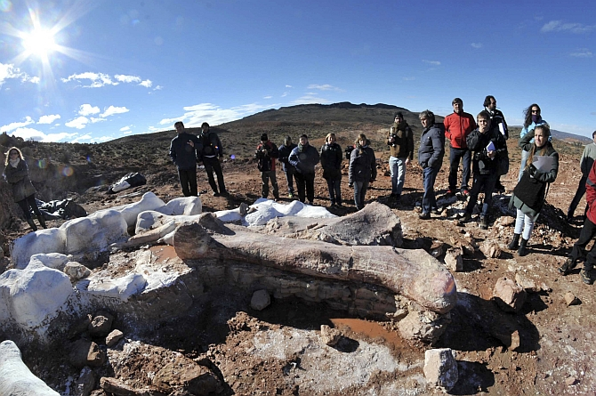 Residents and technicians look at the bones of the dinosaur at a farm in La Flecha,