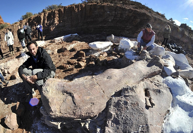 Paleontologists pose next to the bones of the dinosaur