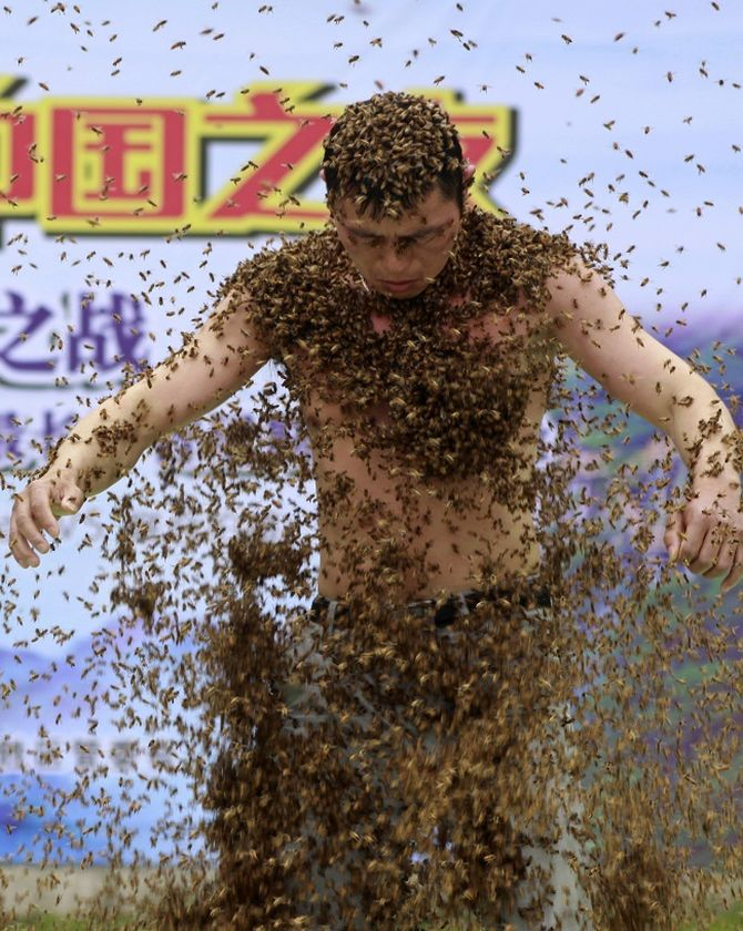 Ruan Liangming holds the record for longest time being coated in bees.