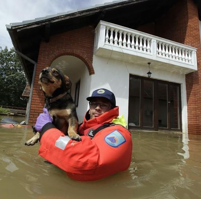 A Slovenian rescue worker saves a dog during heavy floods in the village of Prud.