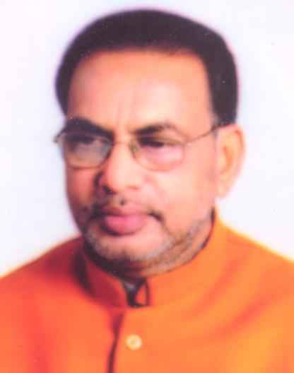 Radha Mohan Singh, Cabinet minister