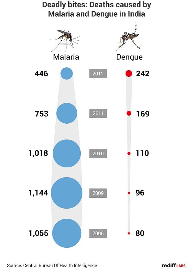 Malaria deaths down, dengue up in India