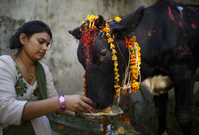 Hinduism has been failed by seculars and the right-wing' - Rediff ...