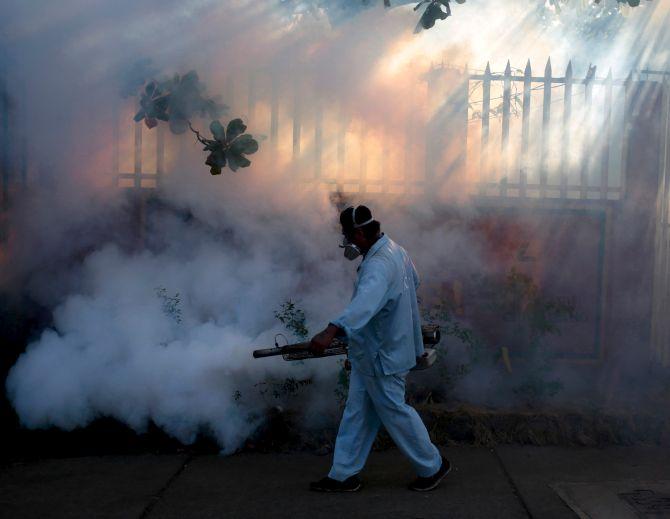 Rediff Sports - Cricket, Indian hockey, Tennis, Football, Chess, Golf - New Zealand athletes given warnings on Zika