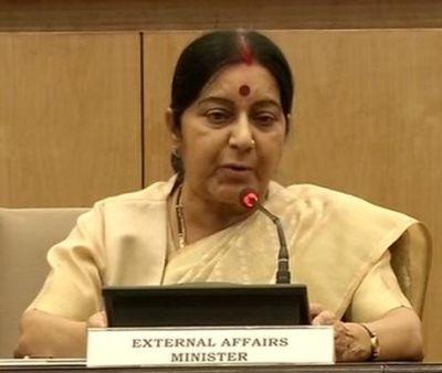 India News - Latest World & Political News - Current News Headlines in India - Sushma Swaraj says China doesn't oppose India's NSG membership bid