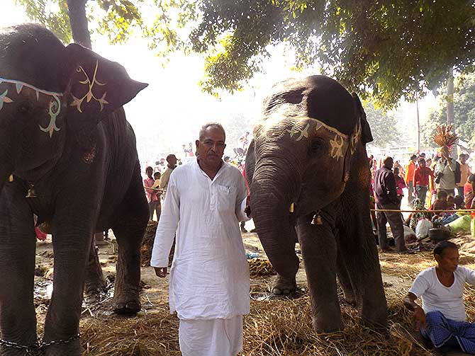 Rama Singh with his elephants, Durga and Pushpa