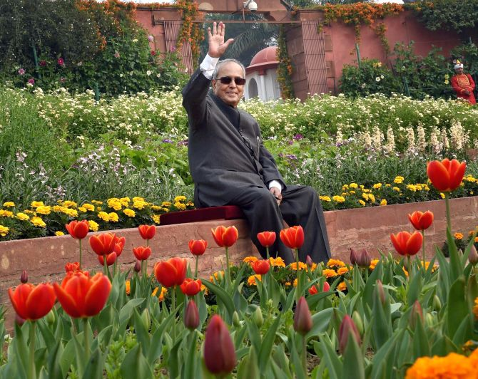 India News - Latest World & Political News - Current News Headlines in India - PHOTOS: 'President Pranab' to bloom at Rashtrapati Bhavan