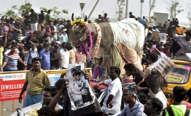 India News - Latest World & Political News - Current News Headlines in India - 'What Tamil pride when 100 farmers have committed suicide?'