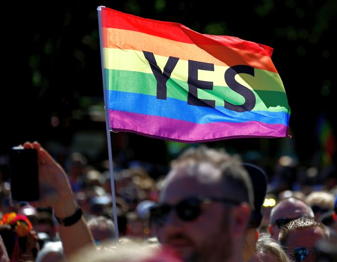 India News - Latest World & Political News - Current News Headlines in India - Celebrations as Australians vote 'Yes' to same-sex marriage