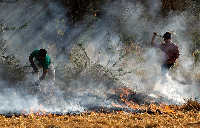 Farmers burn paddy waste stubble in a field on the outskirts of Ahmedabad, India November 15, 2017. Photograph: Amit Dave/Reuters