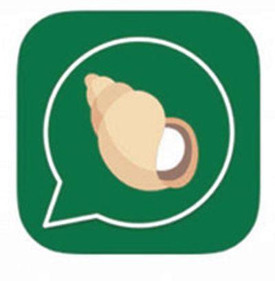 Ramdev's messaging app 'Kimbho' goes off Play Store hours