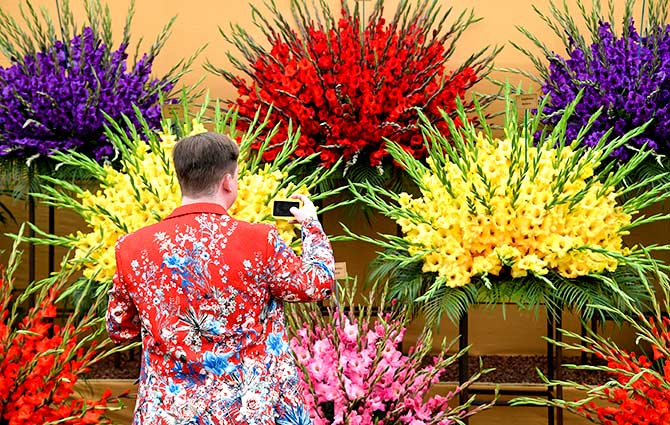 India News - Latest World & Political News - Current News Headlines in India - PHOTOS: Inside the most floral, colourful show in the world