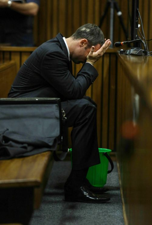 Oscar Pistorius stands accused of the murder of his girlfriend, Reeva Steenkamp