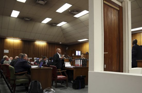 State prosecutor Gerrie Nel speaks during the trial of Olympic and Paralympic track star Oscar Pistorius in the North Gauteng High Court in Pretoria
