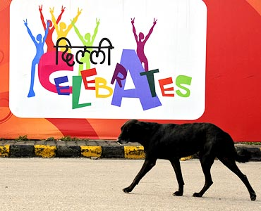 A stray dog trots past a banner installed on a roadside near the Commonwealth Games village in New Delhi