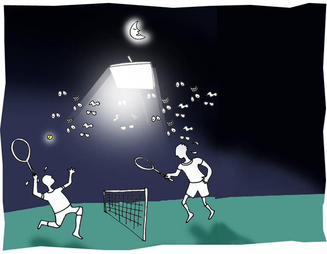 Night matches were first played in 1975