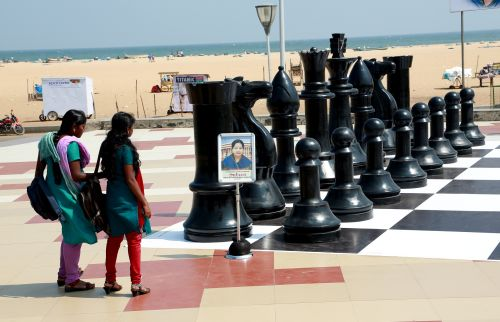 Fans watch a chess board at Marina Beach