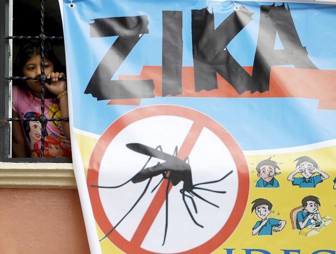 Rediff Sports - Cricket, Indian hockey, Tennis, Football, Chess, Golf - Should athletes consider not attending Olympics if fear Zika?