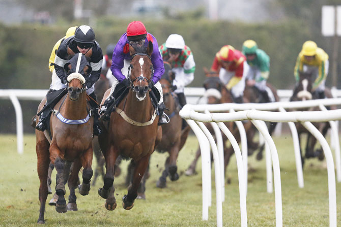 Jamie Moore riding Instingtive (purple) on their way to winning The Graham Warner Retirement Novicesâ Handicap Steeple Chase at Plumpton Racecourse in Plumpton on Monday