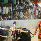 Now, 3 more Kambala racers better Bolt's 100m mark!