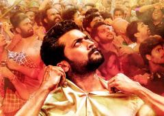 Review: NGK is a waste of time and money