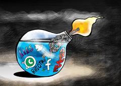 Inside the toxic world of online trolls