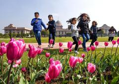 Rashtrapati Bhavan's Mughal Garden is in full bloom!