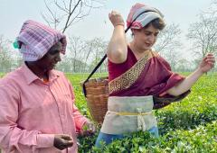 SEE: Priyanka joins in to pluck tea leaves in Assam