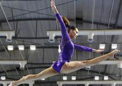 Aus Human rights body to probe gymnastics abuse charge