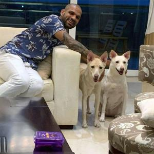 PIX: Dhawan welcomes two new 'family members'