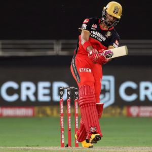 Top performer: Padikkal makes dream debut for RCB