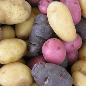 Health benefits of eating potatoes