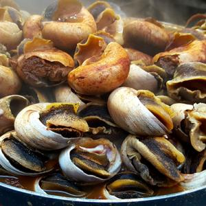 Would you dare to taste boiled snails in Morocco?