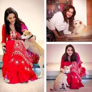 Aww! Have you met Madhuri's pets?