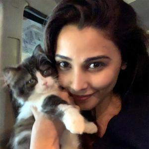 Pet pics: Meet Daisy Shah's adorable fur-baby