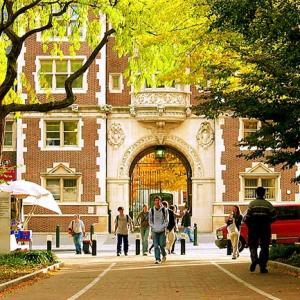 Top 100 universities in the world