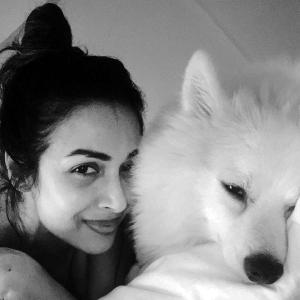 Malaika's pet Casper will make you smile